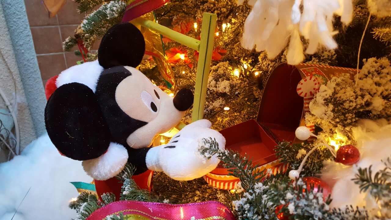 Christmas decorations Art of flowers LV